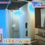 【ヒルナンデス】一級建築士の自宅訪問★築36年マンションをカフェ風リノベ④浴室