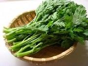 -【ノンストップ】洋風いなりの作り方!ピーマンのワタや種、大根の葉で!野菜使い切り達人レシピ!