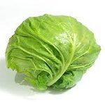 【ヒルナンデス】とろ玉キャベツの作り方!千切りキャベツで須田順子さんのカット野菜レシピ【シンプルレシピ教室】-