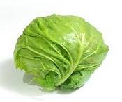 【ヒルナンデス】とろ玉キャベツの作り方!千切りキャベツで須田順子さんのカット野菜レシピ【シンプルレシピ教室】