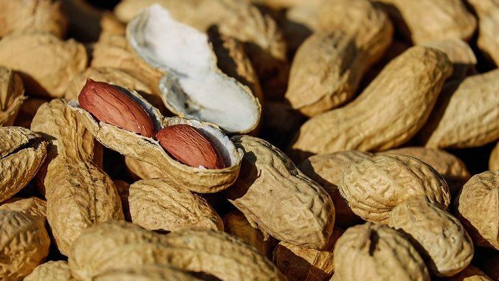 【ゲンキの時間】酢ピーナッツの作り方!ドレッシングのレシピも!高血圧やドロドロ血液対策に!