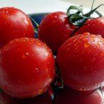 【スッキリ】干し椎茸とトマトで万能ジュースの作り方!本格だしの取り方!