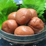 【あさイチ】万能梅だれの作り方!梅干しで簡単!館野鏡子さんのレシピ!