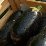 【ごごナマ】なす田楽の作り方!フライパンで!高橋拓児さんの夏野菜レシピ!