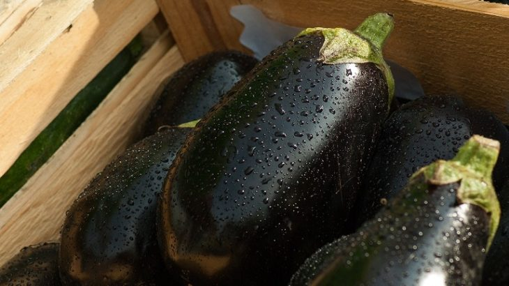 【ごごナマ】なすのトマト風味ペーストの作り方!夏野菜で創作フレンチ!松木一浩さんのレシピ