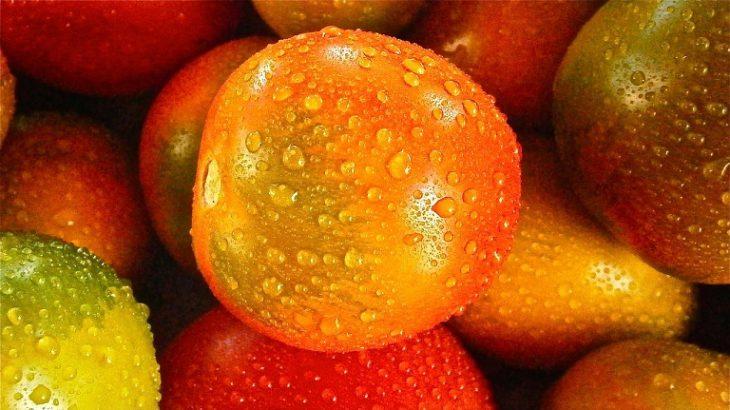【ソレダメ】トマトの炊き込みご飯の作り方!トマト農家の直伝レシピ