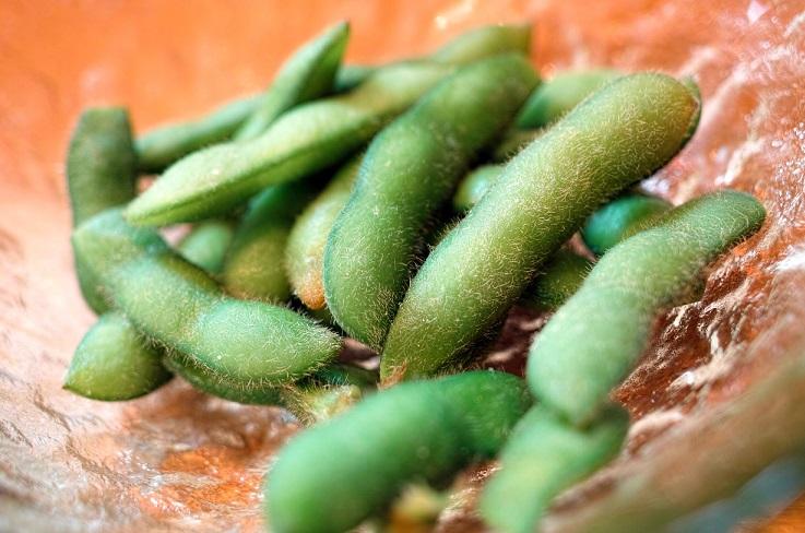 きょうの料理,枝豆のすり流し