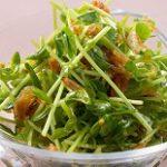 【あさイチ】豆苗のツナあえの作り方!和えるだけの簡単副菜!井原裕子さんのレシピ-