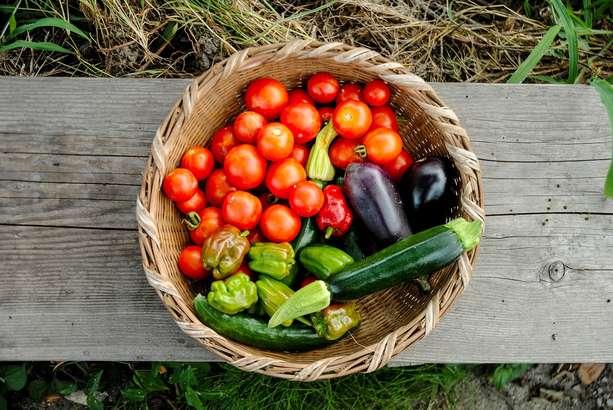 鶏手羽と夏野菜のはちみつマリネ
