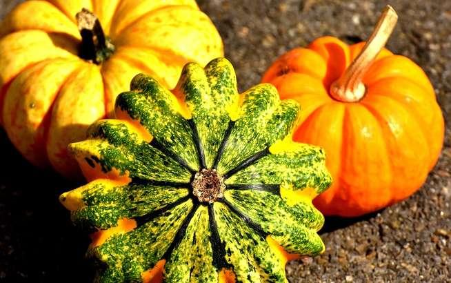 あさいちかぼちゃ煮