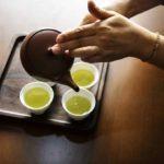 【教えてもらう前と後】ショウガ緑茶氷の作り方&アレンジレシピ!凍らせて調味料にも!血管若返り食材-