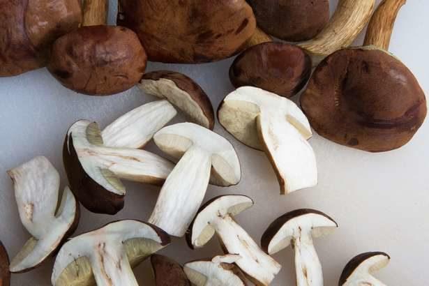 【ごごナマ】きのこたっぷり豆乳鍋の作り方!秋のきのこレシピ【おいしい金曜日】