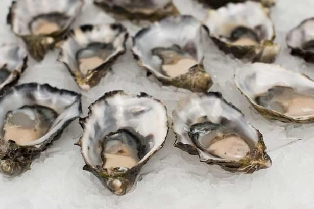 活気づくみぞれ煮 平野レミさんのレシピ!ごごナマで紹介された牡蠣と大根おろしのあったか鍋の作り方-