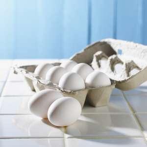 【あさイチ】絶品たまご料理レシピまとめ。たまご料理のマル秘テク(3月31日)