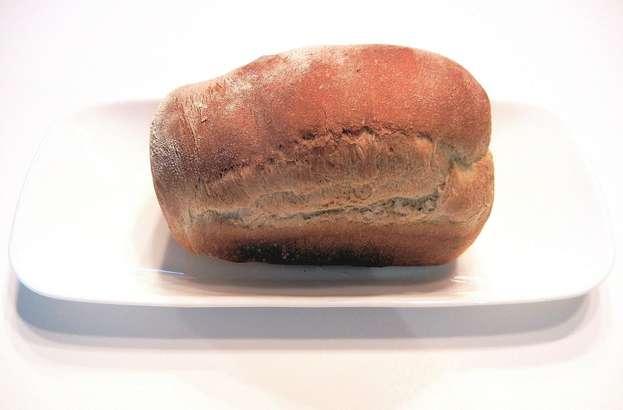 【ヒルナンデス】トーストスチーマーの購入・お取り寄せ方法!最新キッチングッズ&調味料(2月4日)