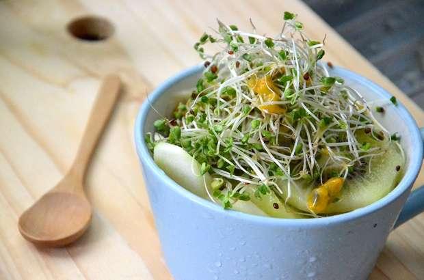 【ヒルナンデス】豆苗ツナサラダの作り方!吉永沙矢佳さんの5分で作れる時短レシピ(2月22日)