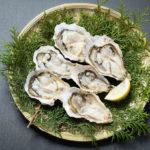 【あさイチ】牡蠣のかば焼き丼のレシピ!JAPA-NAVI静岡・浜松市で紹介(2月28日)