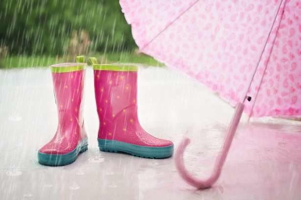 【あさイチ】傘のおすすめアイテム&便利グッズ「傘のシュシュ」など、最新トレンドを紹介(6月4日)
