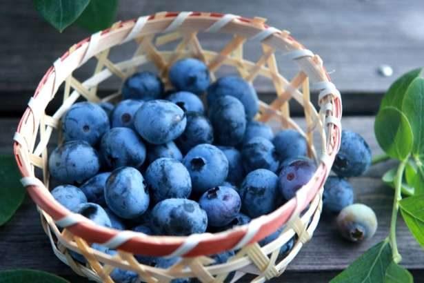 【たけしの家庭の医学】ブルーベリーで血糖値を下げる!効果的な食べ方は?紫色の食材が高血圧改善に(7月2日)