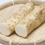 【ガッテン】長芋ジュースで便秘解消!レジスタントスターチが豊富なナガイモの健康効果を紹介(1月15日)
