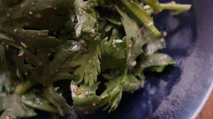 【ノンストップ】レンコンと豚肉のコクうま炒めの作り方。春菊のおかずサラダ!坂本昌行さんのレシピ(11月22日)