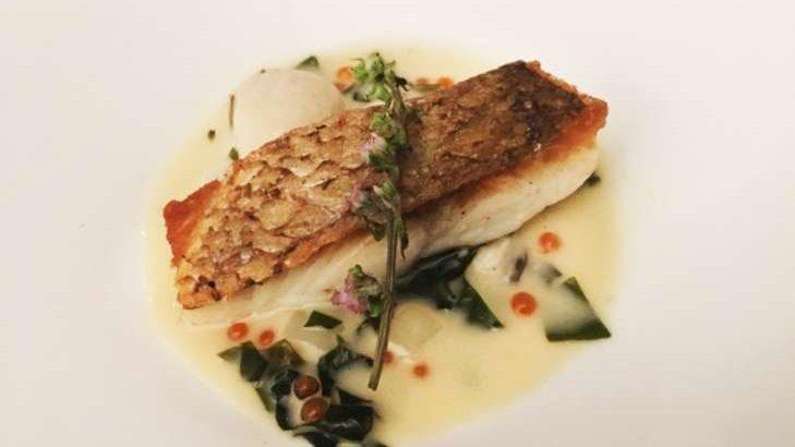 【あさイチ】鯛のデュクレレ風の作り方。秋元さくらシェフのもみじ鯛レシピ【ハレトケキッチン】(11月12日)