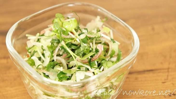 【あさイチ】万能薬味の作り方。和食シェフ野崎洋光さんの夏野菜レシピ(7月21日)