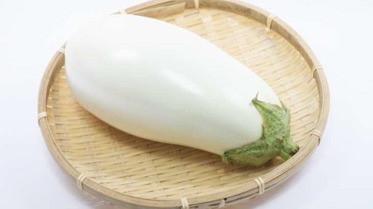 【青空レストラン】トルコナス・白なすの購入方法やレシピを紹介。神奈川県茅ケ崎市の白いナス(8月15日)