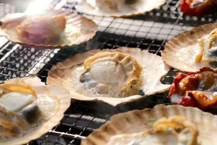 赤皿貝のお取り寄せ
