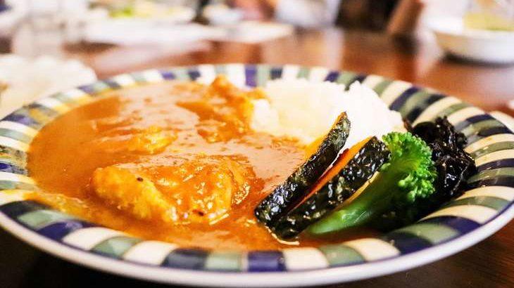 【ヒルナンデス】パンプキンチキンカレーの作り方。スパイスカレーの素で!印度カリー子さんのレシピ 9月10日