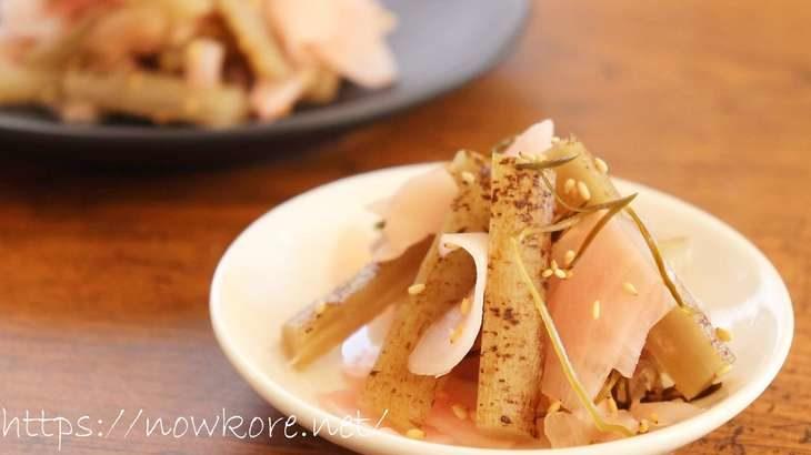 【あさイチ】ガリごぼうのレシピ。天丼店の絶品漬物!おうちで漬け物生活 1月13日