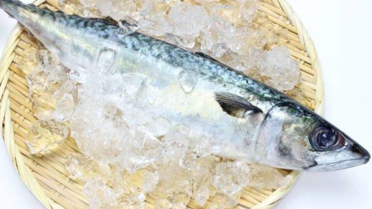 【バナナマンのせっかくグルメ】長崎ハーブしめ鯖の通販お取り寄せ情報まとめ。全国お取り寄せグルメ(4月25日)