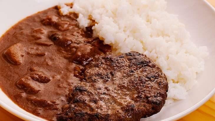 【ホンマでっかTV】ハンバーグカレーのレシピ。リュウジさんさん考案!超時短レシピ ランキング(4月14日)