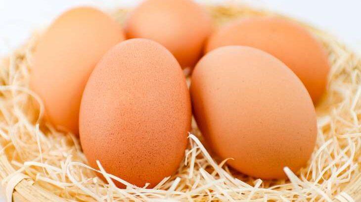 【家事ヤロウ】卵愛王座決定戦!卵料理レシピまとめ。話題の激ウマたまご料理4選(3月3日)