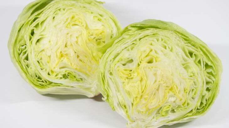 【家事ヤロウ】レタスステーキのレシピ。北風ミシェルさんの絶品レタス料理(3月18日)