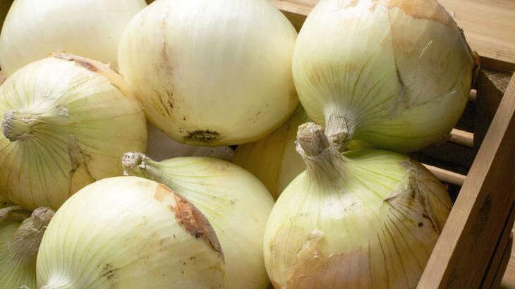 【バゲット】玉ねぎレシピまとめ。グラタン・チヂミ・シュウマイ!プロおすすめのたまねぎ料理(10月21日)