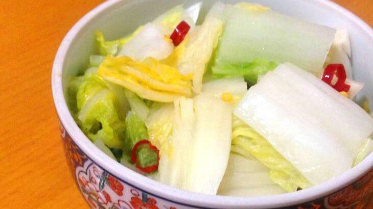 【あさイチ】ラーパーツァイ(辣白菜)のレシピ。山野辺シェフの絶品料理(4月20日)