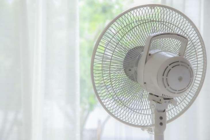 ヒルナンデス扇風機