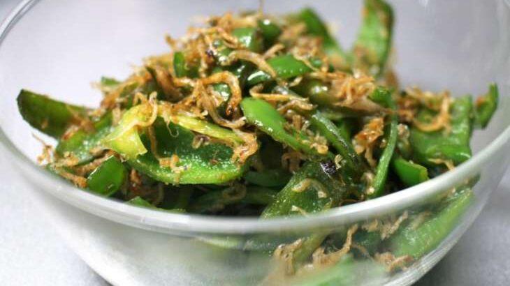 【相葉マナブ】ピーマンの炒めしらす乗せ&焼きびたしのレシピ。平塚の種なしピーマンで旬の産地ごはん(6月13日)