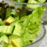 【あさイチ】きゅうりとアボカドのミントサラダのレシピ。しらいのりこさんの電子レンジ簡単料理(6月28日)