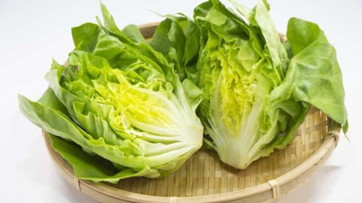 【きょうの料理】タサン志麻さんの丸ごとサラダのレシピ(6月7日)