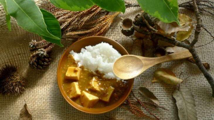 【人生レシピ】厚揚げカレーのレシピ。印度カリー子さんのレンチンカレー(10月15日)