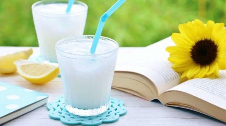 【世界一受けたい授業】甘酒のレシピDIY発酵食品ベスト5
