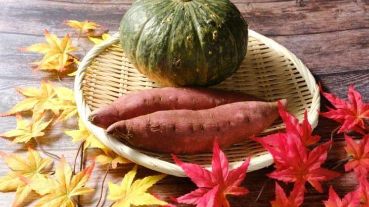 【ヒルナンデス】カボチャVSサツマイモのレシピまとめ。ライバル食材徹底討論(10月13日)