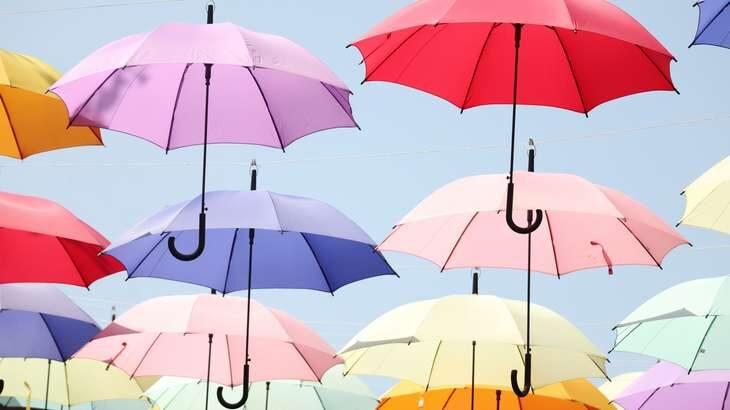 【ヒルナンデス】絶対壊れない傘「センズオリジナル」の通販・お取り寄せ。春日vsで話題(10月13日)